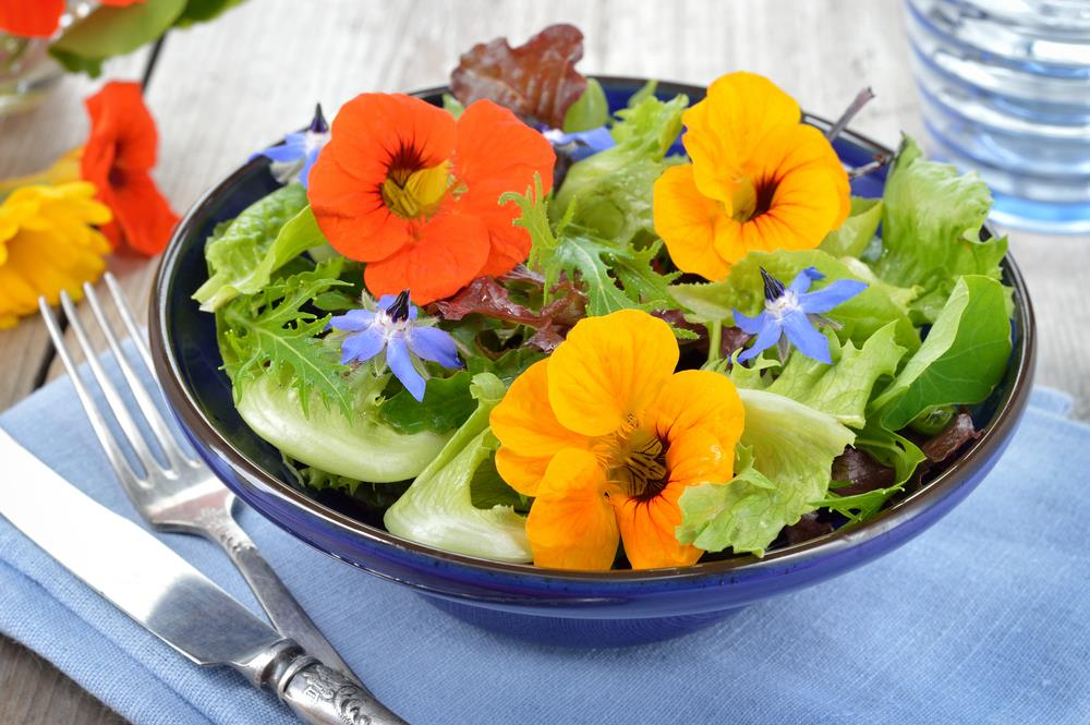 Green salad with borage and nasturtiums