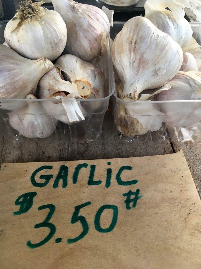 Local and organic garlic
